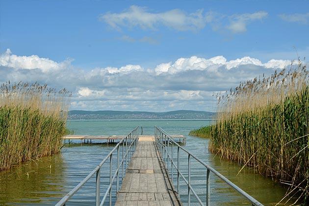 Der Fischereiverband Mittelfranken e.V. ruft zum Fotowettbewerb 2020 auf